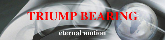 Triump bearing eternal motion